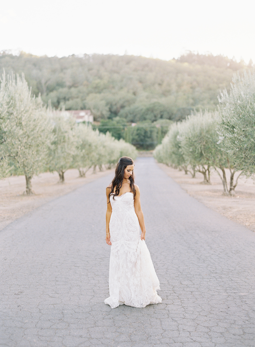 a bride poses for a film photograph on her wedding day in Napa.