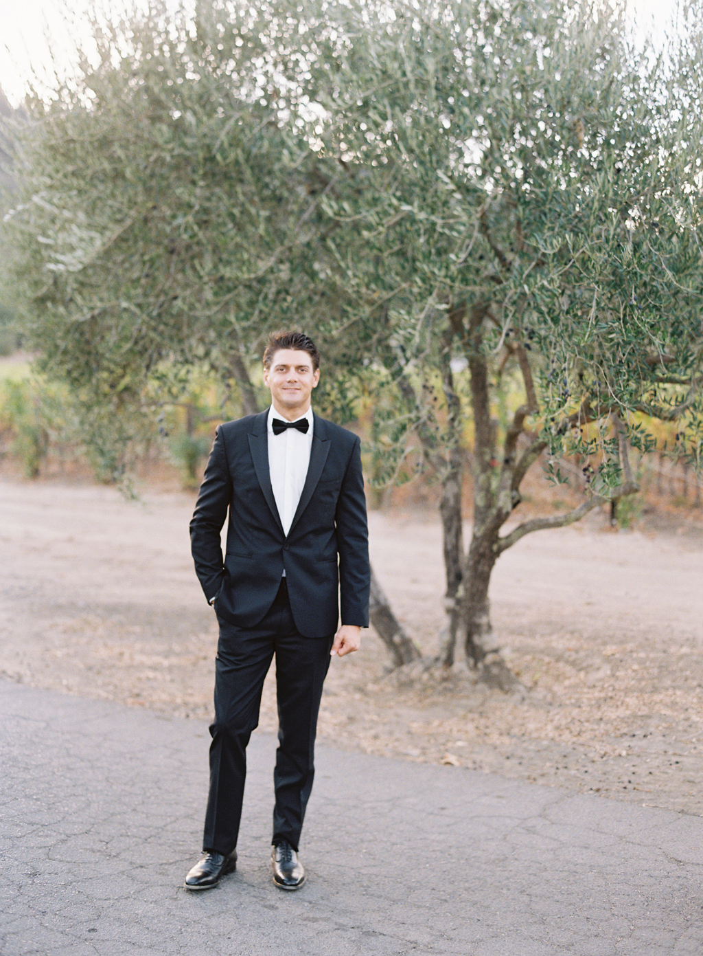 A groom poses in front of an olive tree in napa valley, california, on his wedding day.