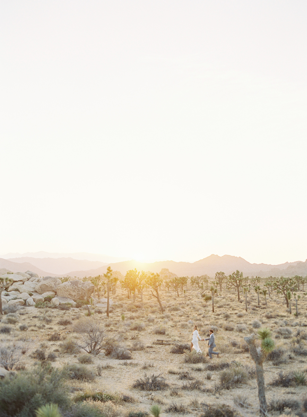 bride and groom film photograph near joshua tree california.